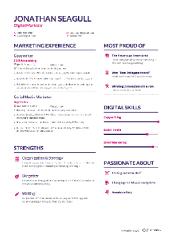 Banner CVs